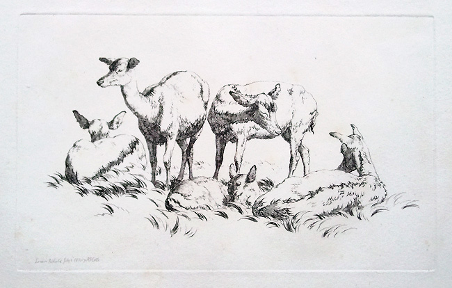 Robert Hill original 19th century etching of Deer for sale