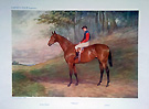 Horse raciing - Race horse prints from Vanity Fair